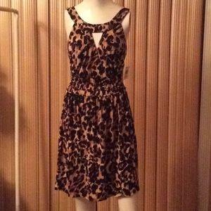 Great Animal Print Summer Dress!